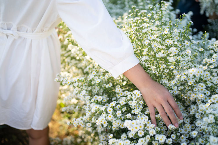 Midsection of woman standing by white flowering plants