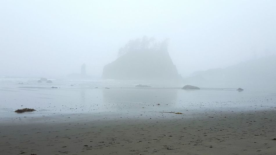 Foggy Fog Melancholy Beach Gray Day Weather Tranquil Scene Calm Nature Solitude Sea Sand Shore Outdoors Ocean Moody Rock Formation Coastline Atmospheric Mood Misty Sihlouettes Outcropping Gray At The Beach Somber