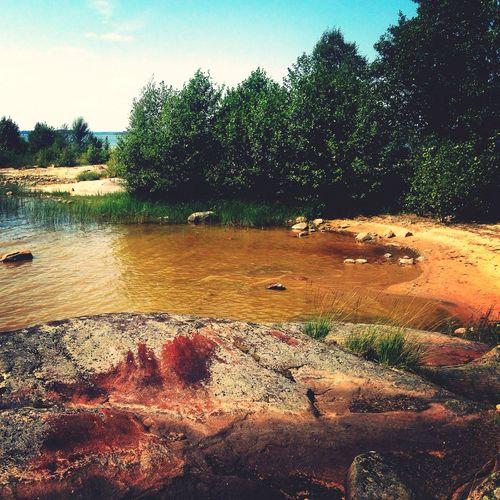 Sweden such a good day! Island Gasa