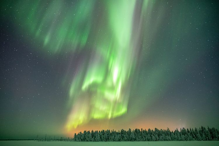Arctic tornado Night Beauty In Nature Sky Star - Space Astronomy Green Color Tranquility Illuminated Landscape Nature Tranquil Scene Majestic No People Outdoors Photography Explore Scenics Aurora Borealis Northern Lights Colors Wilderness Travel Nature_collection Lapland Winter