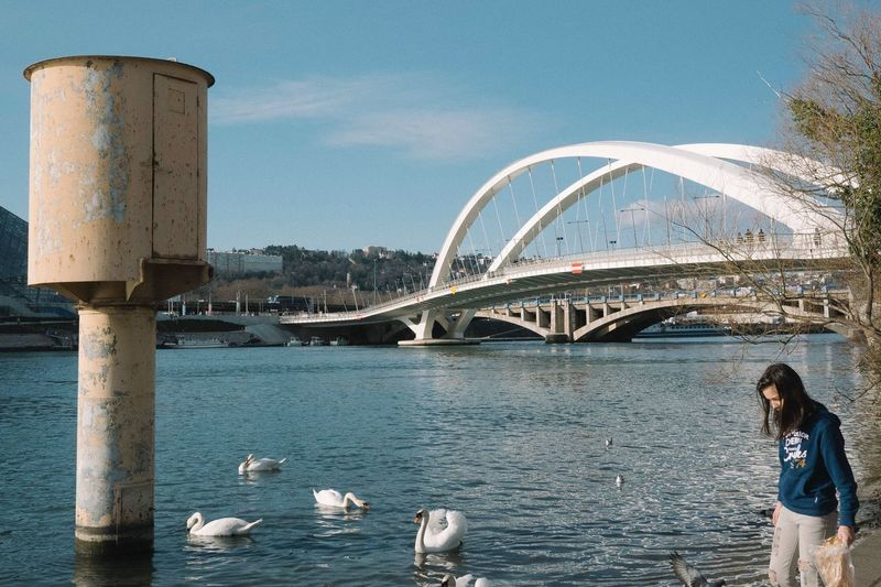 EyeEm Selects Lyon Bridge Girl Swans Rhône River