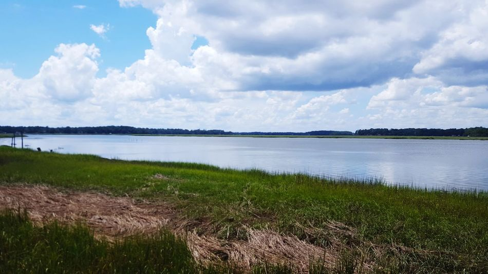 Coastal landscape Coastal Feature Costal Waterways Outdoors Water No People Beauty In Nature Grass Savannah Coastline Landscape Tranquil Scene Nature Tranquility Scenics Cloud - Sky Day Growth