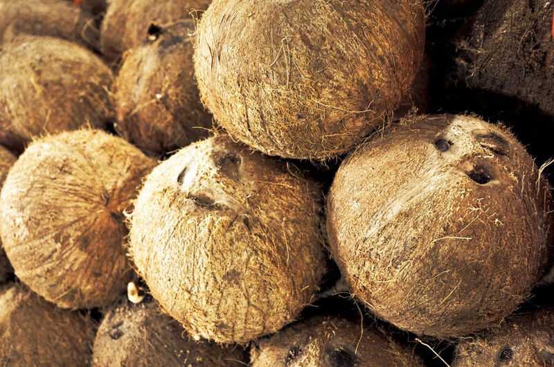 Brown Coconut Food Fresh Produce Fruit Healthy Eating Healthy Food Market Nuts Organic Organic Food Outdoors Ripe Taking Photos Textured  Tropical