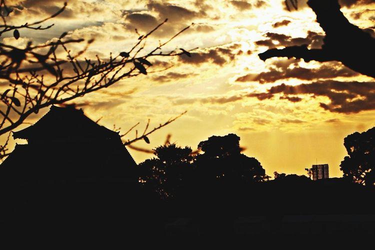 sun set Sunset Kumamoto Castle