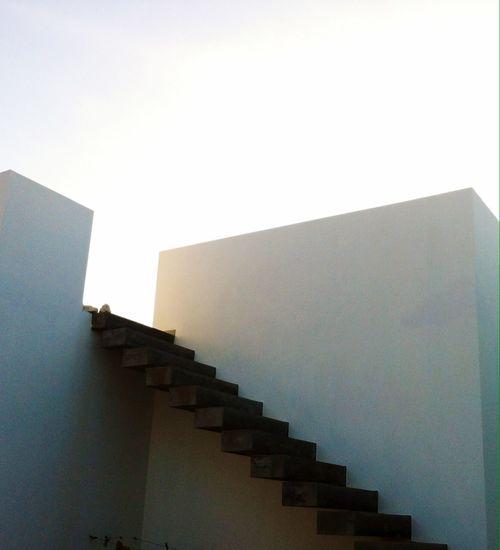 Dreamhouse Moderndesign