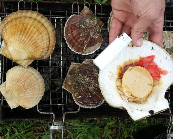 море👻🌊 Sea Beautiful Nature Summer ☀ владивосток приморский край Nature Vladivostok шамора Scallop scallops cooked on the grill with their hands on the beach. Vladivostok Russia