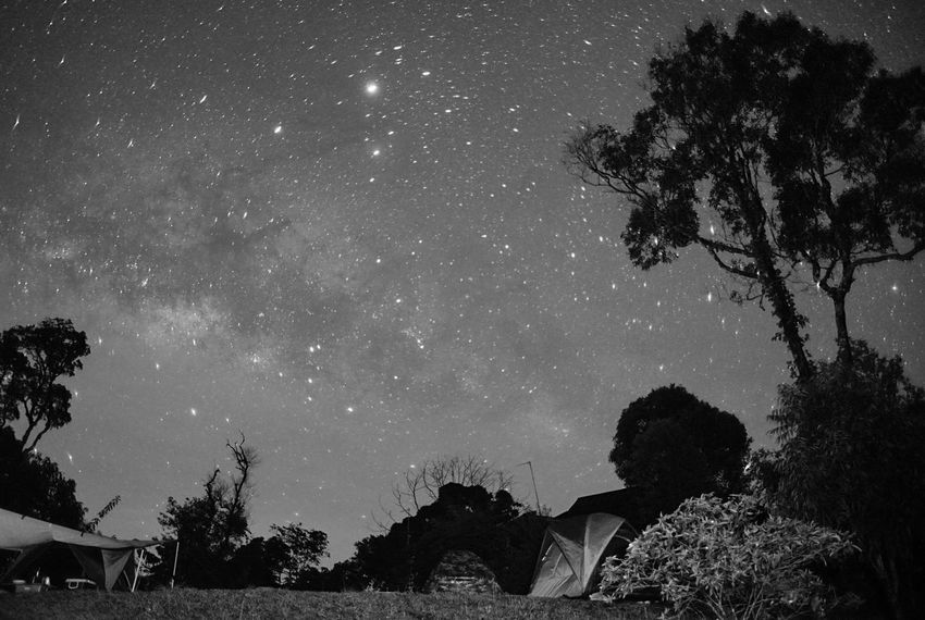 Astronomy Beauty In Nature Blackandwhite Constellation Galaxy Growth Low Angle View Milky Way Galaxy Nature Night No People Outdoors Petchburi Scenics Sky Space Star - Space Thailand The Great Outdoors - 2017 EyeEm Awards Tranquility Tree