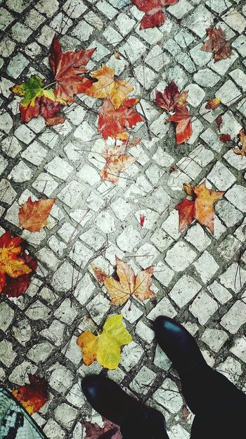 The Shoes and Autumn Leaves on the Ground Floor One Person Low Section Leaf Autumn Outdoors Brown Color Leaf Of Autumn Huawei P8 Lite My Smartphone Life Red Fresh On The EyeEm Fresh On The Market 2016 Enjoy The New Normal Autumn Collection Nature Backgrounds