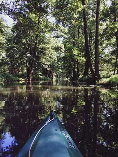 Canoeing in the Spreewald Canoeing Water Trees River Excercising Camping Relaxing Blue Green Sport Enjoying Life Nature Colorful Adventure