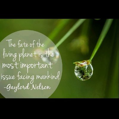 Our planet, one experiment. iseng buat Quote Save Our Nature macro