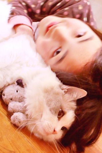 Childhood Little Girl A Girl And Her Cat Chat Katze Katzenliebe Cute Pets Domestic Cat Domestic Animals Indoors  Mammal Close-up Animal Themes One Person Friendship Day People Pet Portraits Cuddle Cat And Girl