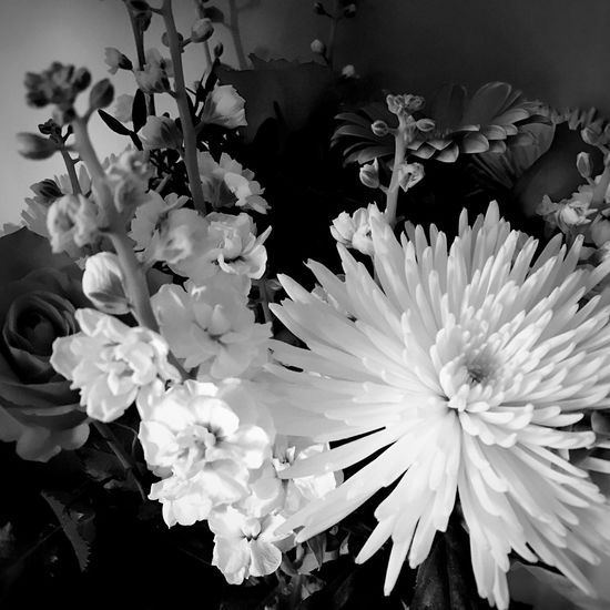 Stocks & Chrysanthemums... Flowerphotographyart Flowerphotography Flowercollection Birthday Bouquet Flower Arrangement Black And White Photography Black And White Flower Collection Floral Photography