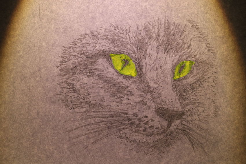 The face of cat wrote by pencil on white paper Diamond Eyes  Textures Animal Themes Black And White Cat Close-up Cute Design Drawing Face Fur Ideas Lazy Animal Long Mustache Long Tail Mammal Nature Night No People One Animal Outdoors Paper Pets Sand Texture