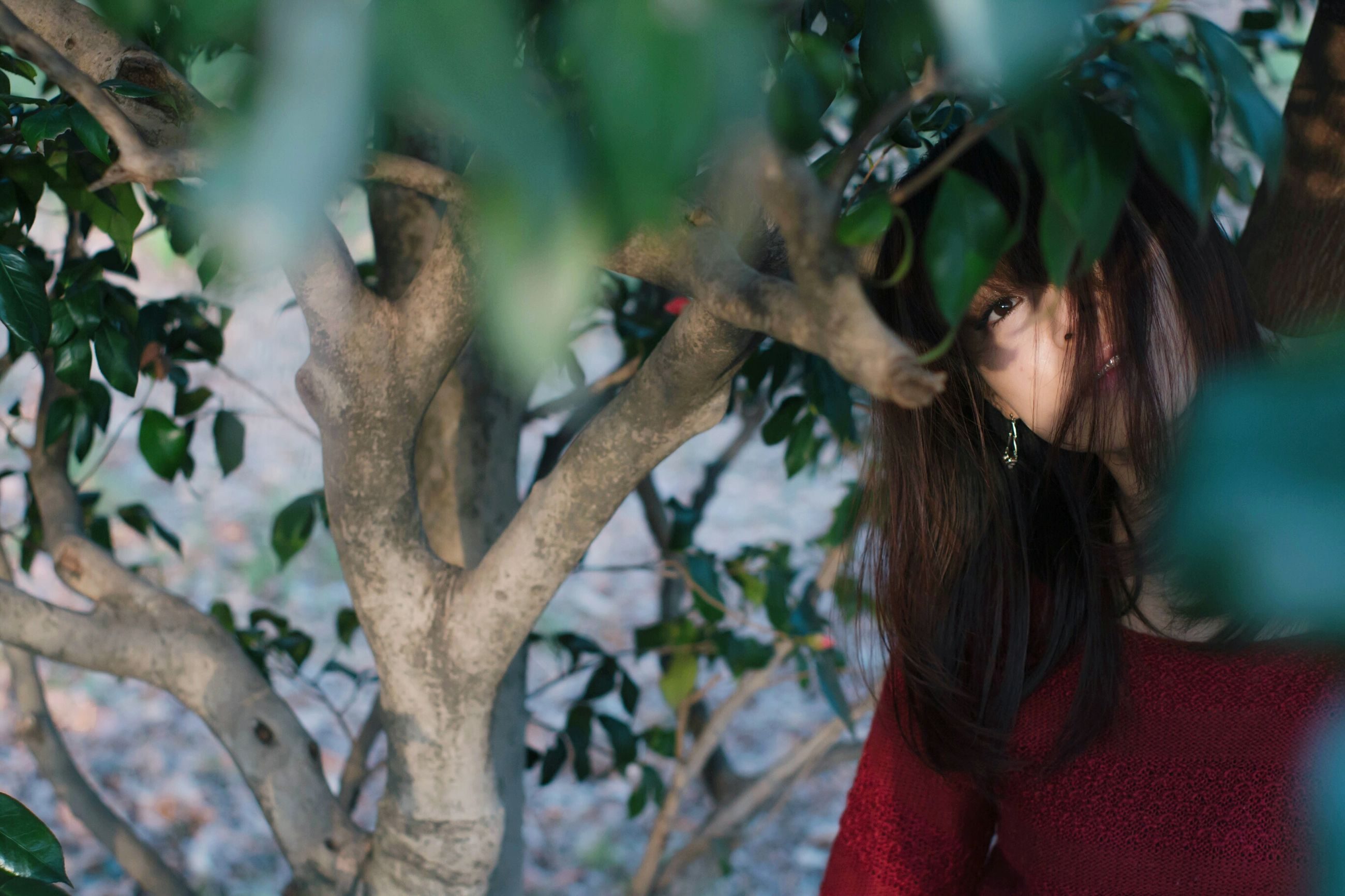 tree, one person, headshot, leaf, branch, day, real people, close-up, one woman only, adults only, nature, outdoors, people, young adult, adult