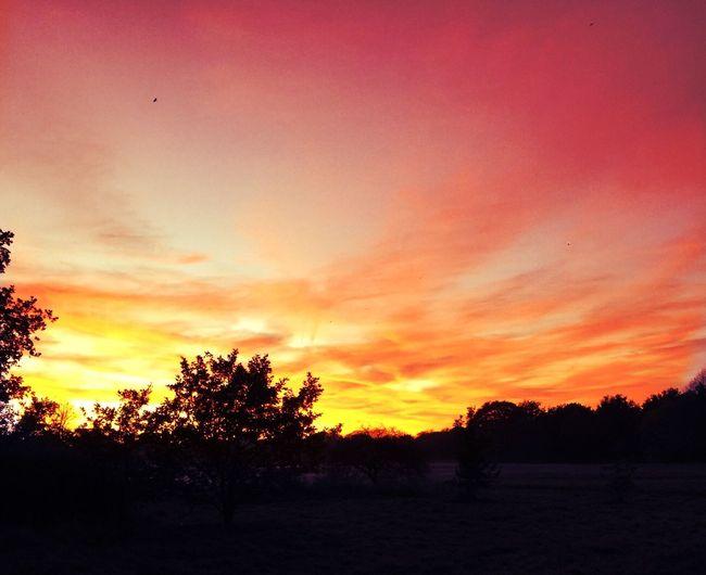 sunset 🍂🍁