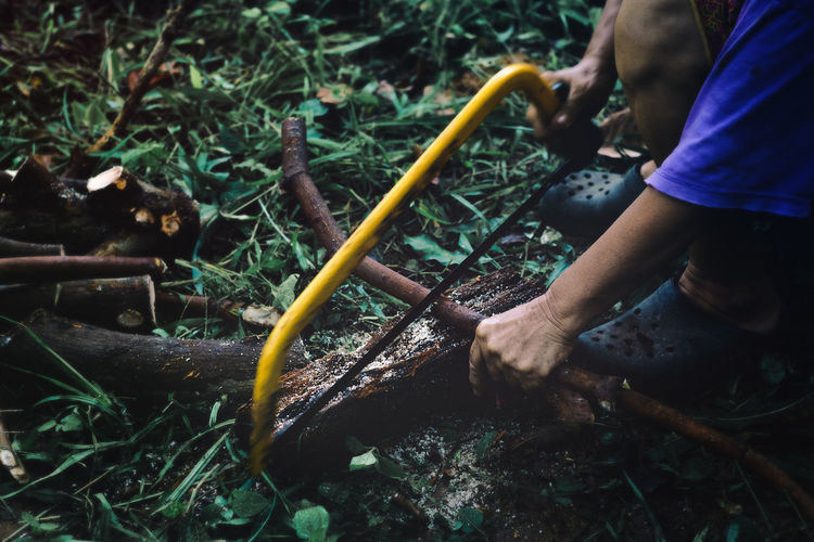 Cut timber in countryside. Beauty in nature. Nature Gardening Equipment Leisure Activity Holding Wood Wooden Saw Abstract People Sawing Fuel Firewood Pyre Stack Beauty In Nature Log Timber Beam Block Rustic Countryside Country Lifestyles Life