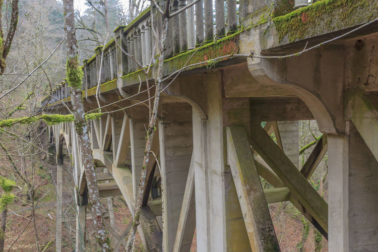 Architecture Bridge - Man Made Structure Bridge Over Creek Building Built Structure Concrete Bridge Connection Day Deterioration Growth Moss On Bridge Nature No People Outdoors Plant Sky Transportation Tree