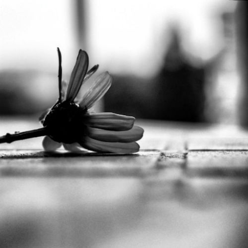 Things you find on the floor... part II EyeEm Best Shots - Black + White EyeEm Best Shots Shootermag AMPt_community