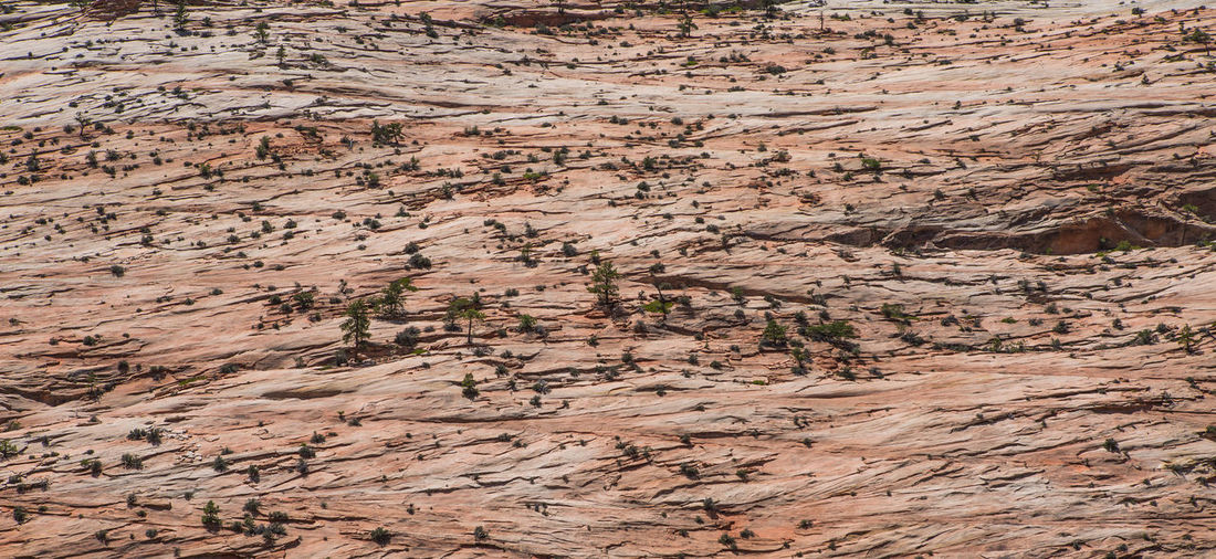 High Angle View Of Rocky Landscape
