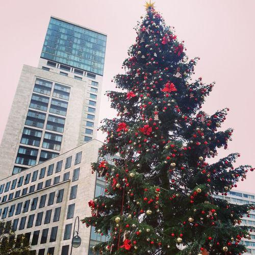 Berlinstagram Christmas Tree Whyiloveberlin Makingberlinbeautiful