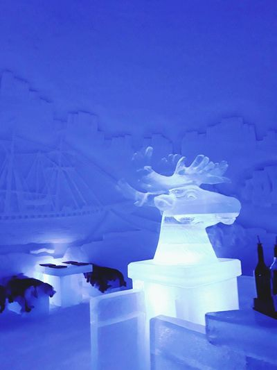 Oh deer Travel_collection Ice Carving Illumination Cocktails On Ice Travel And Tourism Cool Places Ice Art Lighting Effects Frozen Carved Scene Crafted Beauty Ice Hotel Winter Wonderland Nightspot Norway Beauty Magical Place Winter_collection Winter Cold Temperature Snow Nature Frozen No People Blue Ice Purple Night Tranquility Beauty In Nature Illuminated