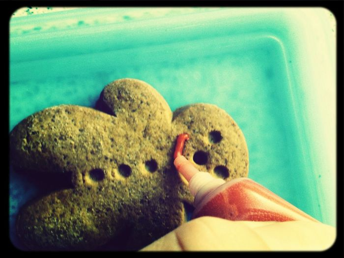 Food Cookie Monster  Yummy Hello World ;3