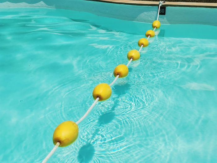 High angle view of fruits on floating in swimming pool