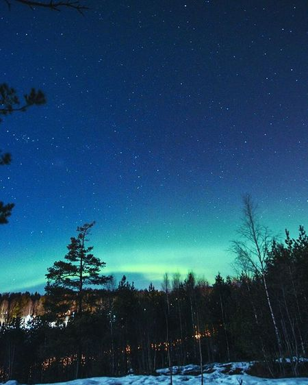 Just a moment ago at Kirkkonummi auroras showed up!🌲🌈