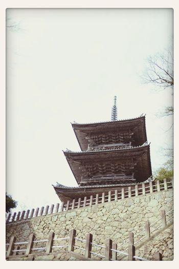 三重塔☆ Shrine Architecture DSLR