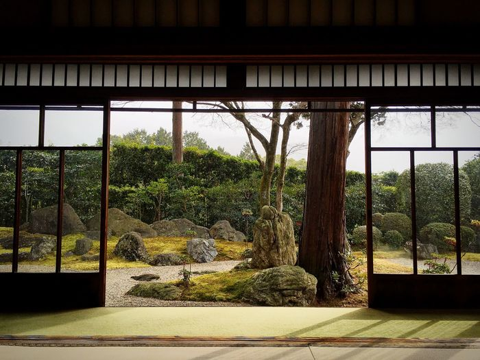 真如堂 真正極楽寺 京都 Kyoto, Japan Kyoto Japanese Garden Kyoto Temple 3XSPUnity Travel Destinations Hello World Enjoying Life Kyoto Garden Relaxing
