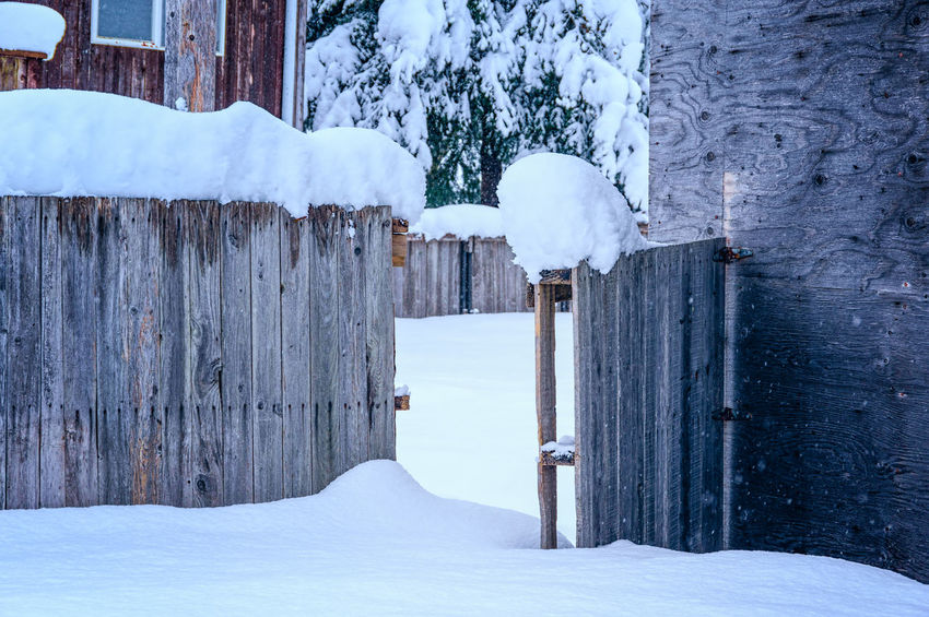 Beauty In Nature Cold Temperature Day Frozen Ice Nature No People Open Gate Outdoors Scenics Snow Snowing Tranquility Weather White Color Winter Wood - Material Wood Paneling