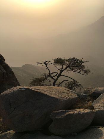 아무 문제가 없습니다. 모든 것이 괜찮을 것입니다. ♥️ Mountain Sky Tree Popular Photos Butiful♥ EyeEm