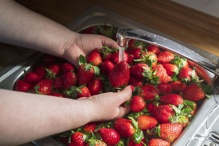 High angle view of person holding strawberries