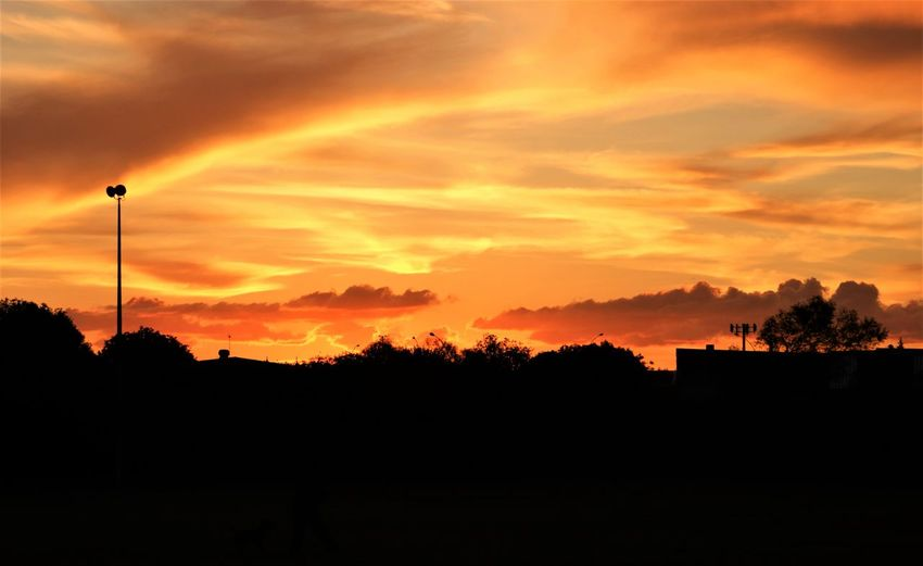 Beautiful Colours.... Beautiful Nature Beauty In Nature Beauty In Nature Cloud - Sky Clouds And Sky Dramatic Sky Eyeemnaturelover EyeEmNewHere Fresh On Eyeem  Landscape_Collection Nature No People Orange Color Outdoors Scenics Silhouette Sky Sunset Tree The Great Outdoors - 2017 EyeEm Awards