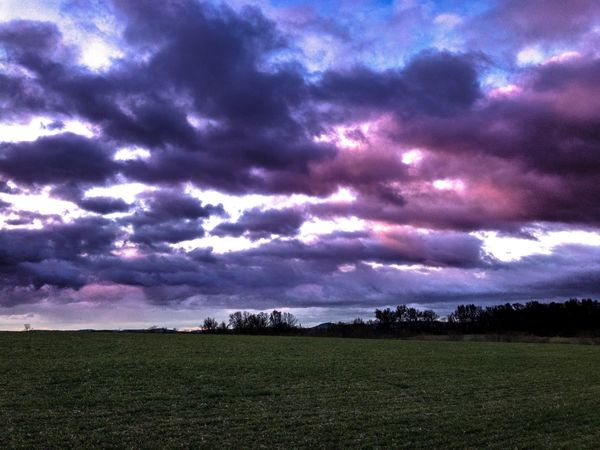 Sky Nature Landscape Scenics Tranquil Scene Beauty In Nature Tranquility Field No People Weather Cloud - Sky Outdoors Growth Rural Scene Purple Agriculture Storm Cloud Tree Grass Day