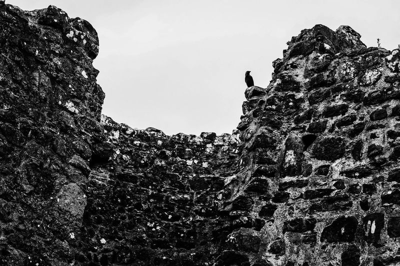 """For the """"knight"""" is dark and full of terrors... Batman The Dark Knight  Canonphotography Castle Ruin Blackandwhite Bird Crow Creepy Gothic Love Perfection Is Always Frowned Upon From My Point Of View Showcase: February Photography Is My Escape From Reality! Eye4photography  Taking Photos Monochrome Stone Gameofthrones"""