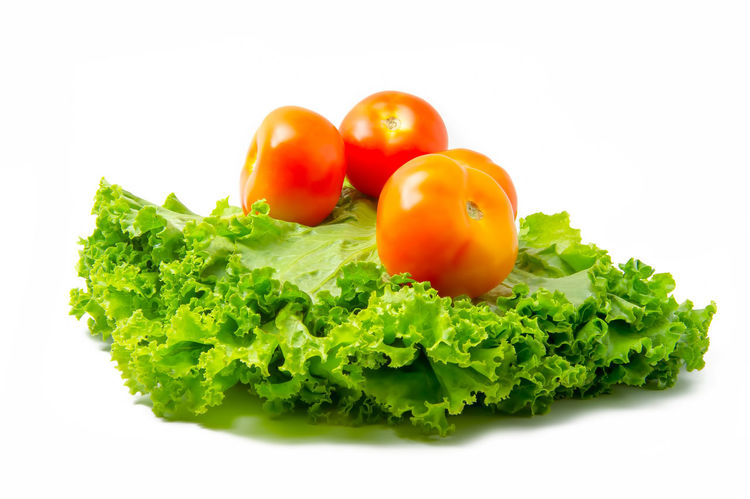 various vegetables (tomatoes, lettuce leaves) on white background Agriculture Diet Isolated Salad Vegetables & Fruits Vegetarian Food Close-up Food Food And Drink Fresh Freshness Green Color Healthy Eating Healthy Lifestyle Kitchen Lettuce No People Nutrition Organic Studio Shot Tomato Tomatto Vegetable Vegetables White Background