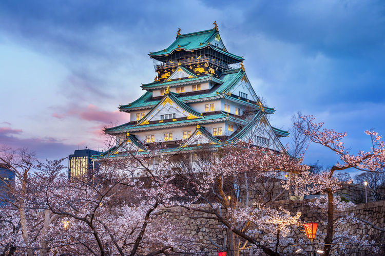 Cherry blossoms and castle in Osaka, Japan. Sky Built Structure Cloud - Sky Architecture Tree Low Angle View Building Exterior Religion Belief Nature Plant Spirituality Building Place Of Worship No People Dusk Travel Destinations Outdoors Branch Spire