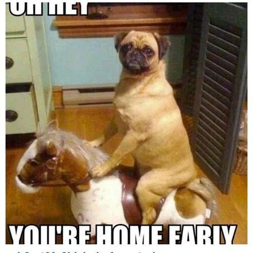 Oh Hey Ur Home Early Ctfu