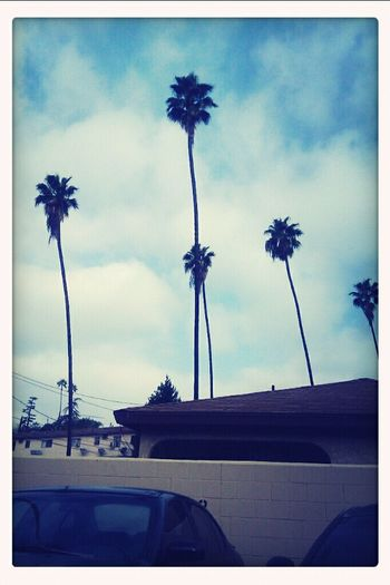 Loving This Weather #LABaby