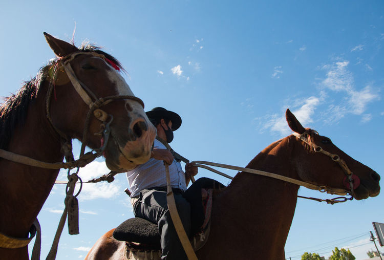 Low angle view of argentinian people riding horses