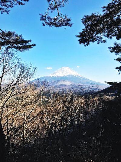 fuji fuji Viewpoint High View 5 Lakes Kawaguchiko Travel ASIA Japan Trekking Fuji View Forest Hiking Fuji Mountain Nature Beauty In Nature Mountain Day Snow Cold Temperature Sky Winter Mountain Range Scenics Outdoors Clear Sky