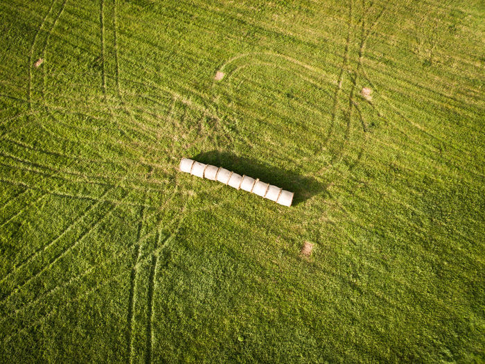 Aerial View Agriculture Beauty In Nature Cereal Plant Combine Harvester Crop  Day Dronephotography Farm Field Freshness Grass Green Color Growth High Angle View Irrigation Equipment Landscape Nature No People Outdoors Rural Scene Scenics