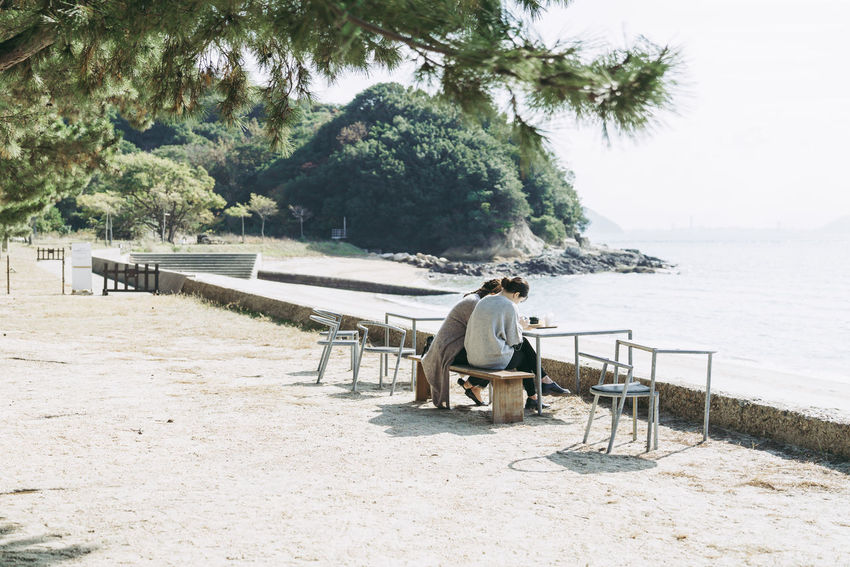 Tree Plant Water Real People One Person Full Length Nature Men Land Seat Leisure Activity Lifestyles Day Sitting Casual Clothing Beach Growth Beauty In Nature Outdoors