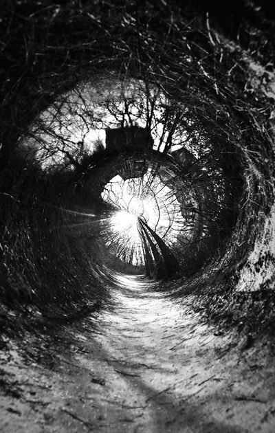 Q Quest Eye4photography  Creativity Swirl Art Outdoor Photography Grey Blackandwhite Outside Photography Art Adventure Fantasy Light And Shadow Showcase March Black And White Collection  Black & White Telling Stories Differently 2016 EyeEm Awards TakeoverContrast