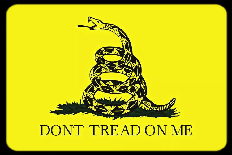 DontTreadOnMe 2nd Amendment Freedom Life Liberty And The Pursuit Of Hapiness