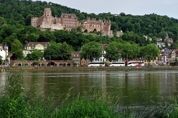 Außenaufnahme Beautiful Castle Deutschland Heidelberg Schloss Sonniger Tag Sunnyday☀️ Fluss Germany Man Made Object Man Made Structure Neckar Outdoor Photography River Schlossruine Vegetation Wasserspiegelung Waterfall Old Town Housing Settlement Human Settlement TOWNSCAPE Ancient History Settlement Place Of Interest Rooftop Tiled Roof  Town Fortified Wall