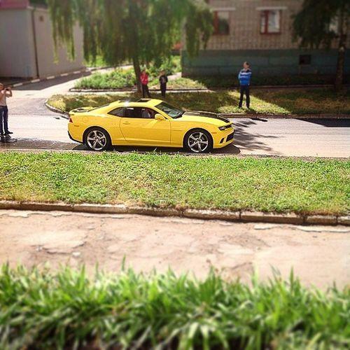 В Богородицке сделали дорогу и начали снимать новых трансформеров :) Power Muscle Ponycar Chevrolet camaro bumblebee