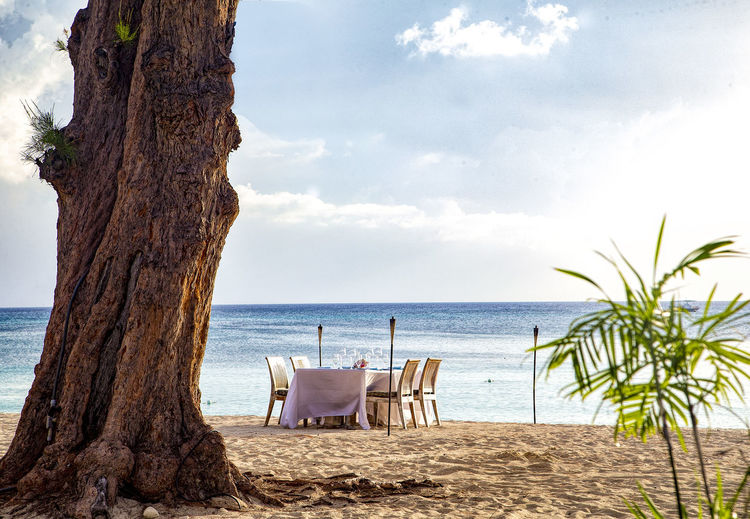 Dining on the beach Caribbean Life Beach Cayman Islands Chair Dining On The Beach Formal Dining Room Horizon Over Water Outdoor Dining Outside Eating Outdoors Sand Seven Mile Beach Tranquil Scene Tree Tree Trunk Trunk Water