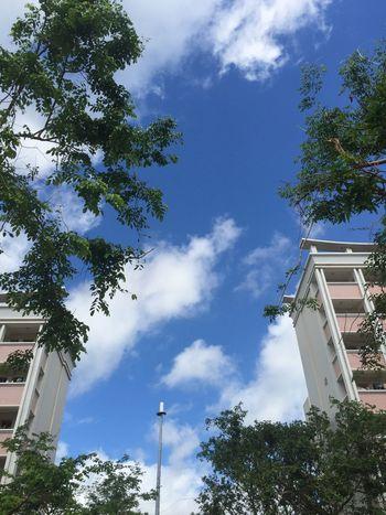 在一个每天天空都很美的地方